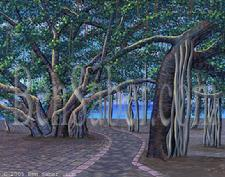 Painting # 23 Banyan tree in Lahaina. Original acrylic on canvasboard 11x14 inches $295 SOLD