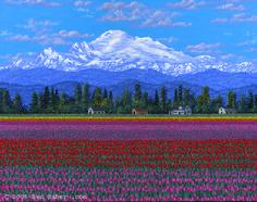 Skajit Valley tulips and mt Baker washington painting
