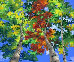 Aspen Trees painting picture fall autumn foliage