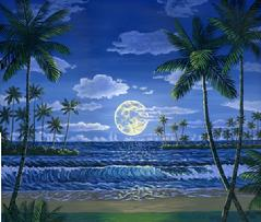 hwaii beach night moon painting picture tropical