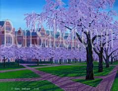 UW Quad Blossoms university of washington painting picture