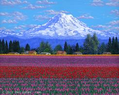 tulips tulip flowers mt rainier puallup washington