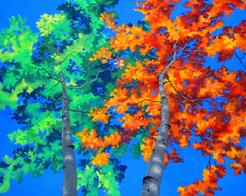 aspen cotton wood poplar painting fall autumn picture