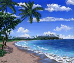 Airport Beach, Maui Hawaii painting picture
