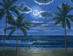 Hawaiian beach in the moonlight painting picture