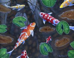 Koi Fish Pond painting picture tropical
