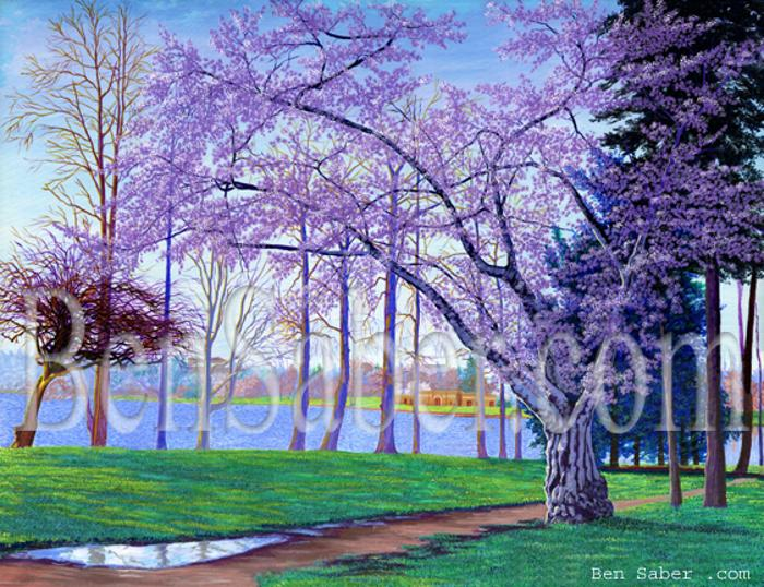 greenlake painting art green lake picture cherry blossom flowers